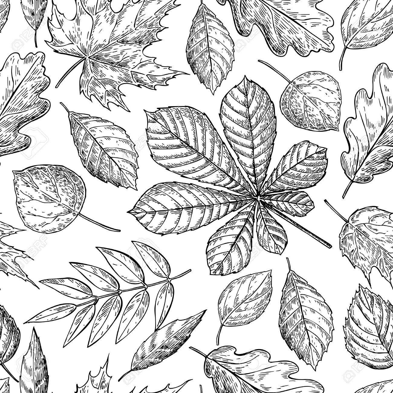 1300x1300 Seamless Vector Pattern With Autumn Leaves. Hand Drawn Detailed