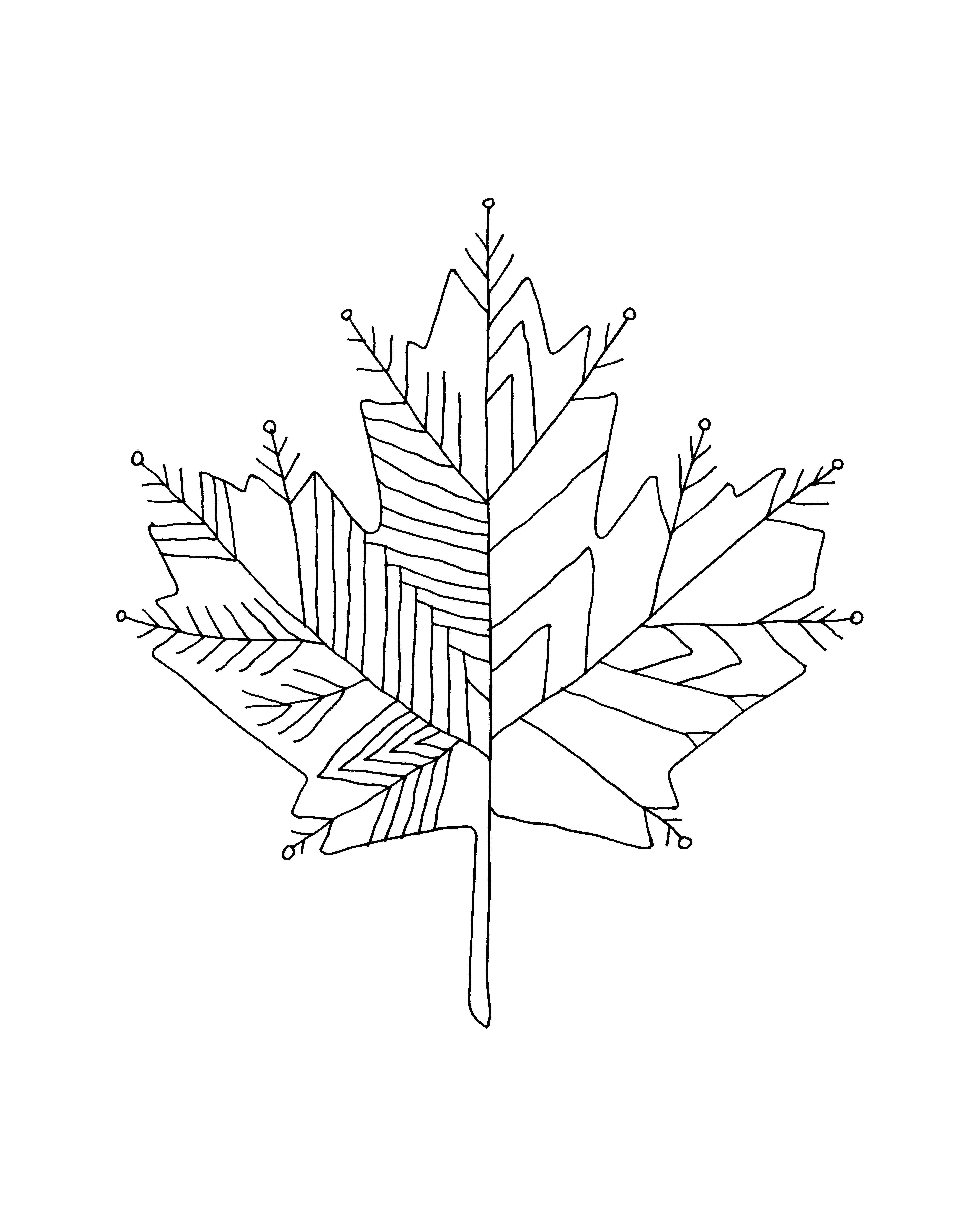 4800x6000 Inner Maple Leaves Colour With Recolor