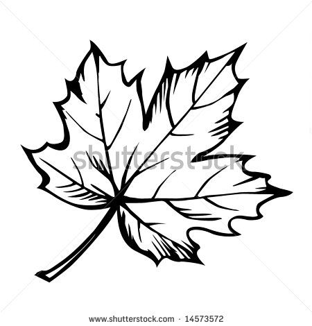 450x470 Fancy Maple Leaf Outline Clipart