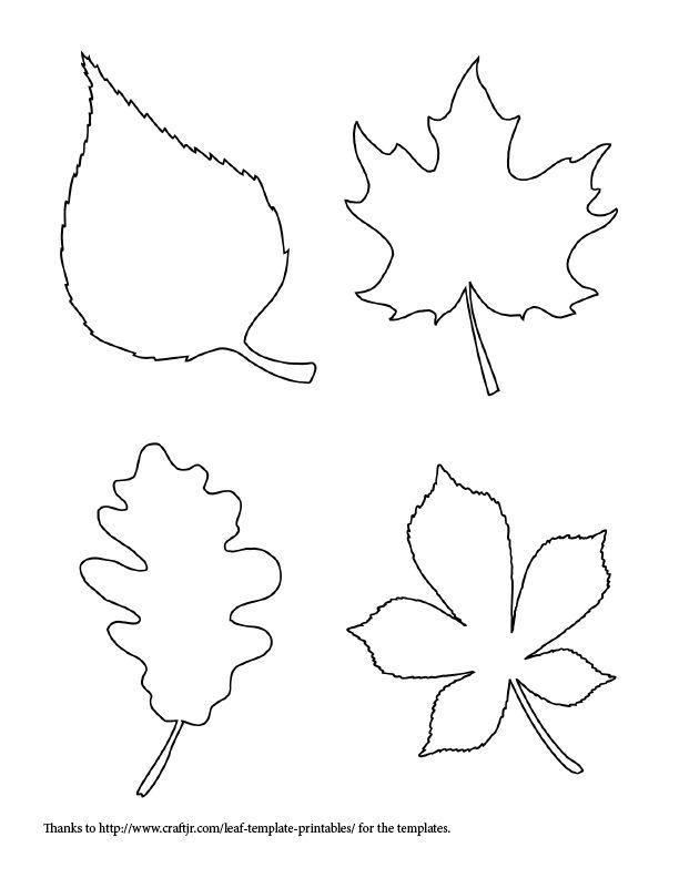 612x792 Leaf Template Free Printable