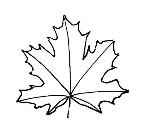 550x495 Leaf Templates For Kid's Crafts