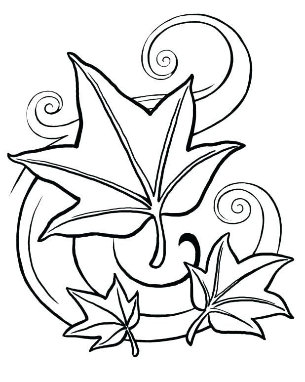 618x773 Printable Leaves Coloring Pages Leaf For Coloring Leaf Coloring