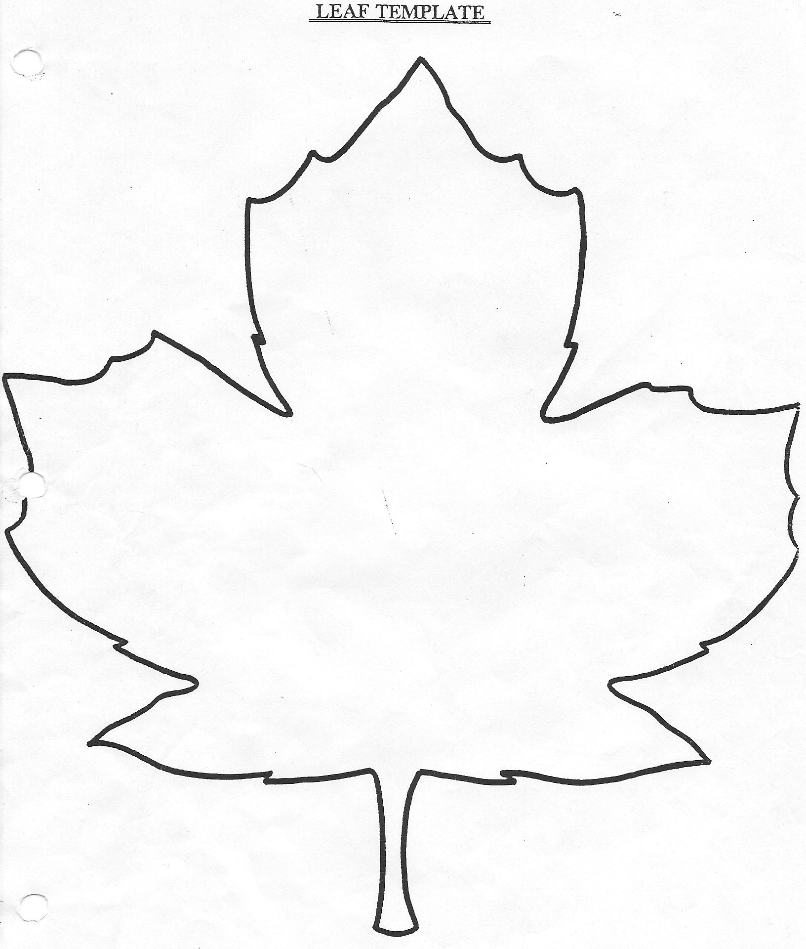 1632x1920 Best Photos Of Leaf Drawing Template
