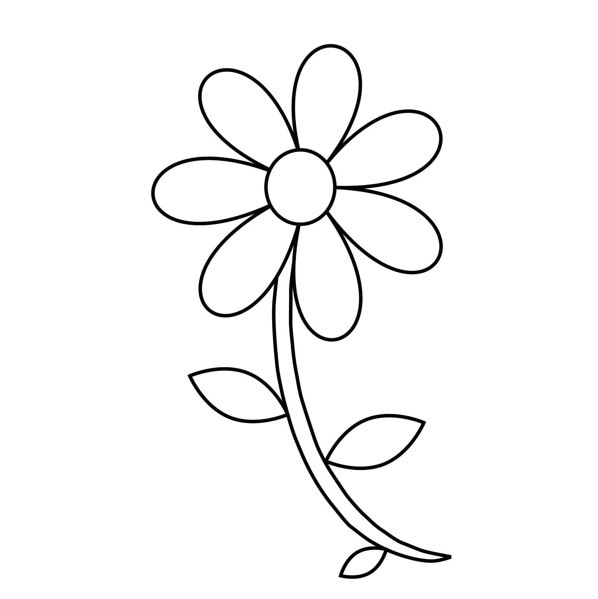 1916x1920 Leaves Outline Clip Art Maple Leaf Outlines Leaf Patterns Pdf