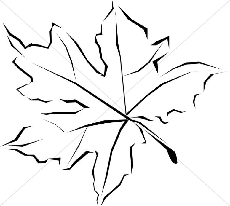 776x695 Line Art Fall Leaf Leaf Clipart
