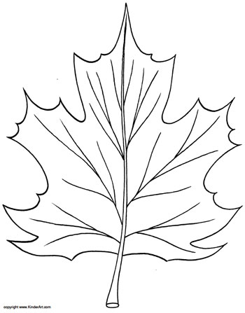 350x447 Maple Leaf Coloring Page Kinderart