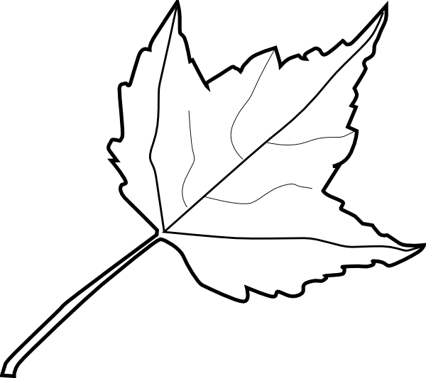 600x533 Maple Leaf Outline Clip Art