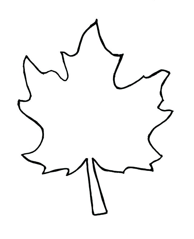 640x789 Thanksgiving Leaves Coloring Pages Autumn Maple Leaf Template