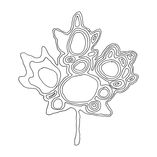 600x600 Canadian Maple Leaf Colouring Page By Donald Lee Canadian Maple