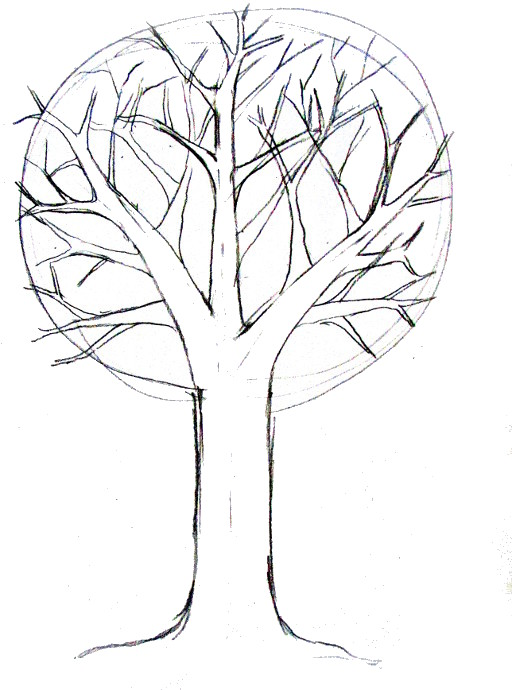 512x690 How To Draw A Tree