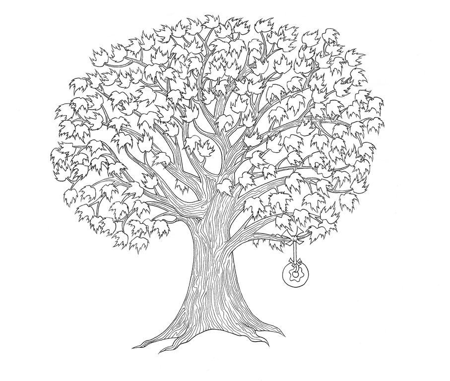 Maple Tree Drawing At GetDrawings