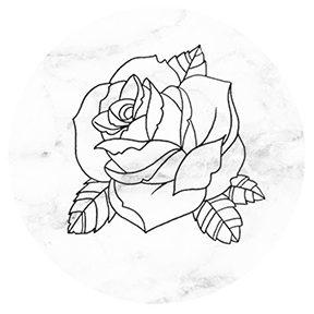 288x288 Rose