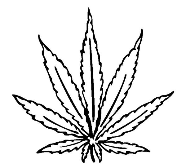 600x542 Cannabis Leaf Drawing I Free Images