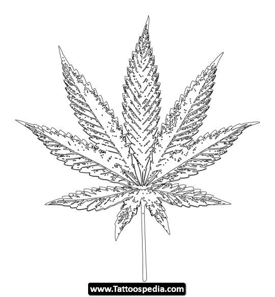 540x582 Cannabis Tattoos