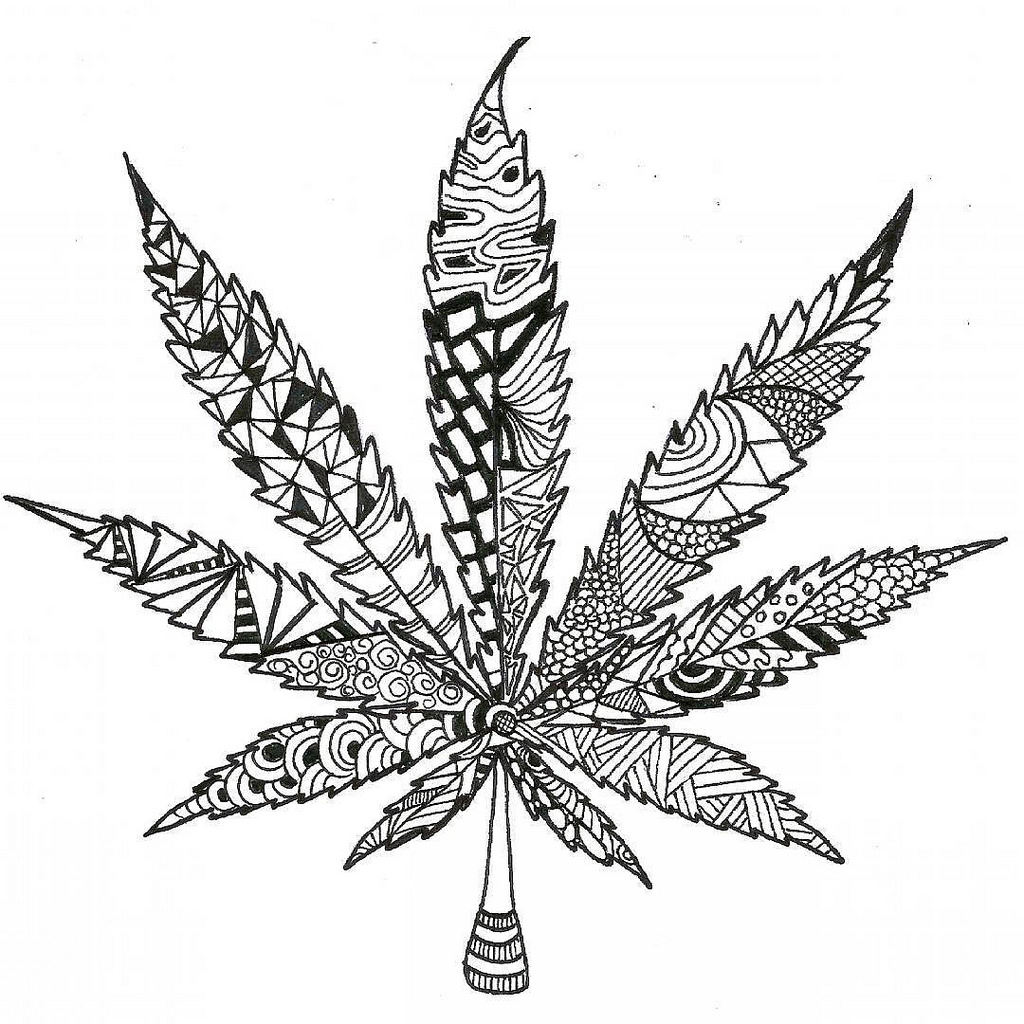 This is a picture of Enterprising Cannabis Leaf Drawing