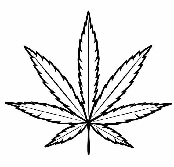 570x548 Marijuana Leaf 3 Medicine Cannabis Pot Weed Smoking Smoke