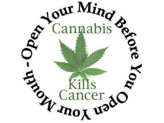 560x420 Medical Cannabis