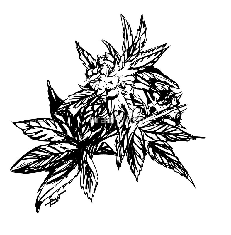788x800 Cannabis Ink Sticker. Check Out That Beautiful Bud. Cool Black