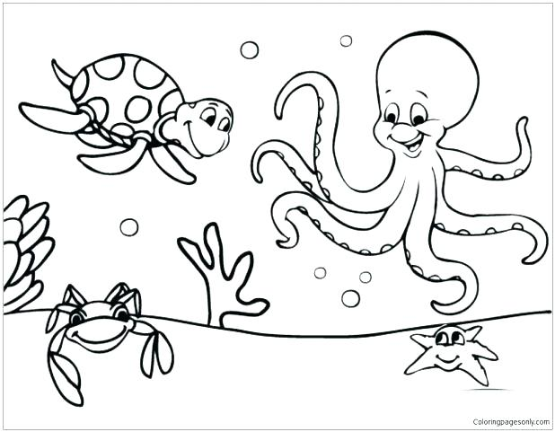 618x481 Marine Coloring Pages Ocean Animal Coloring Pages Marine Animals