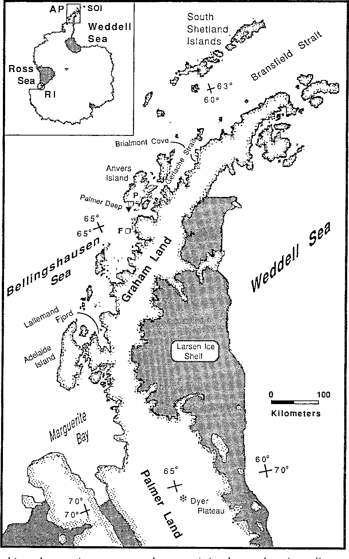 958x1530 Marine Ecosystem