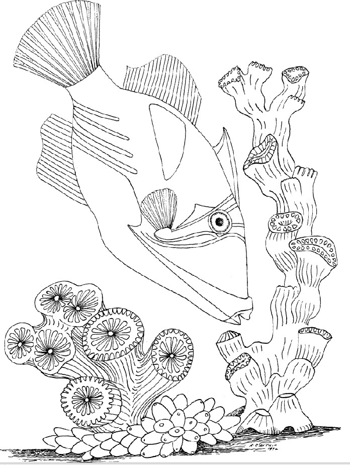 696x924 Underwater Coloring Pages