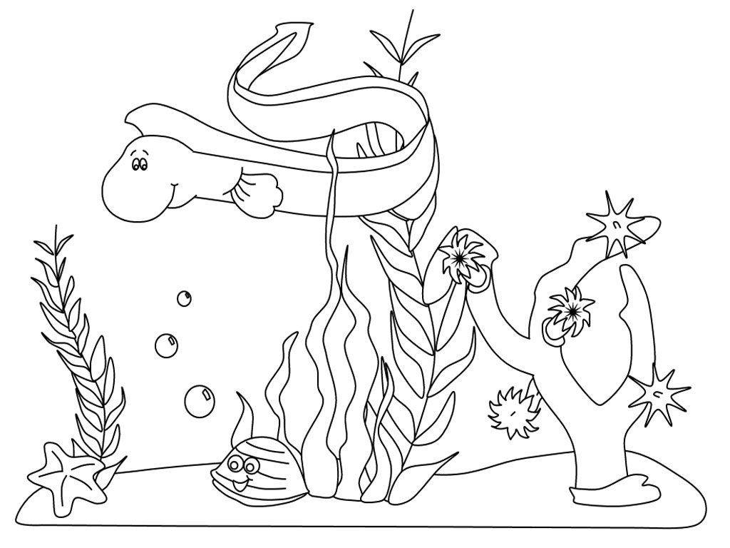 1024x768 Coloring Page Of Aquatic Ecosystem