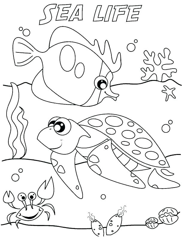 618x811 Marine Coloring Pages Ocean Life Coloring Pages Plus Ocean