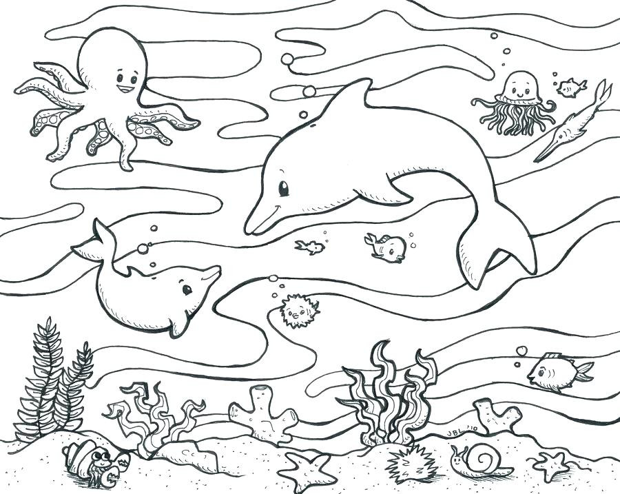 900x717 Marine Life Coloring Pages