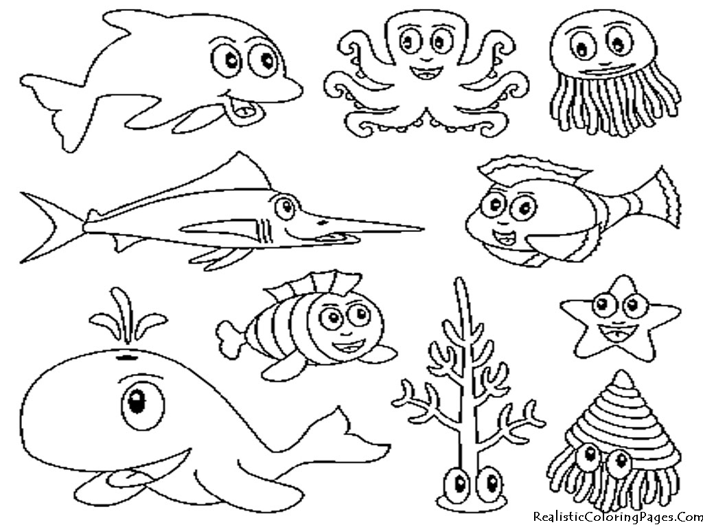 1024x768 Sea Creatures Images In Pencil Asy To Draw Marine Life Drawing