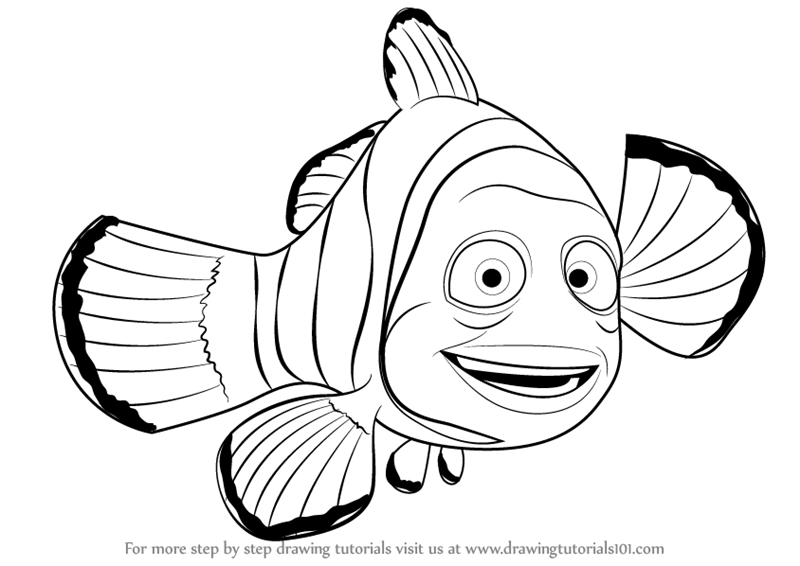 800x566 Learn How To Draw Marlin From Finding Nemo (Finding Nemo) Step By