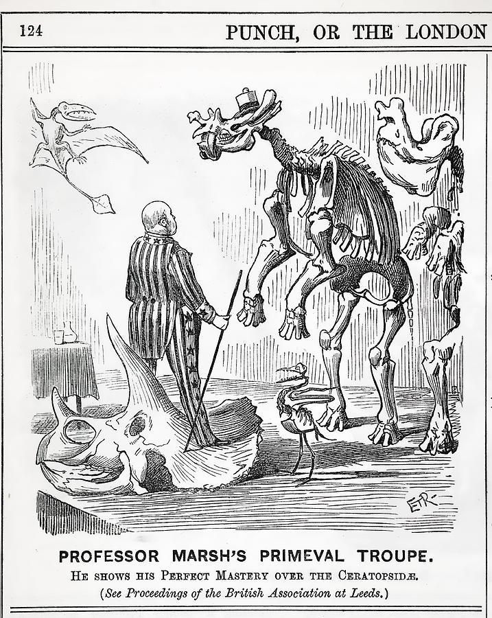 717x900 1890 Punch Cartoon Othaniel Marsh Photograph By Paul D Stewart