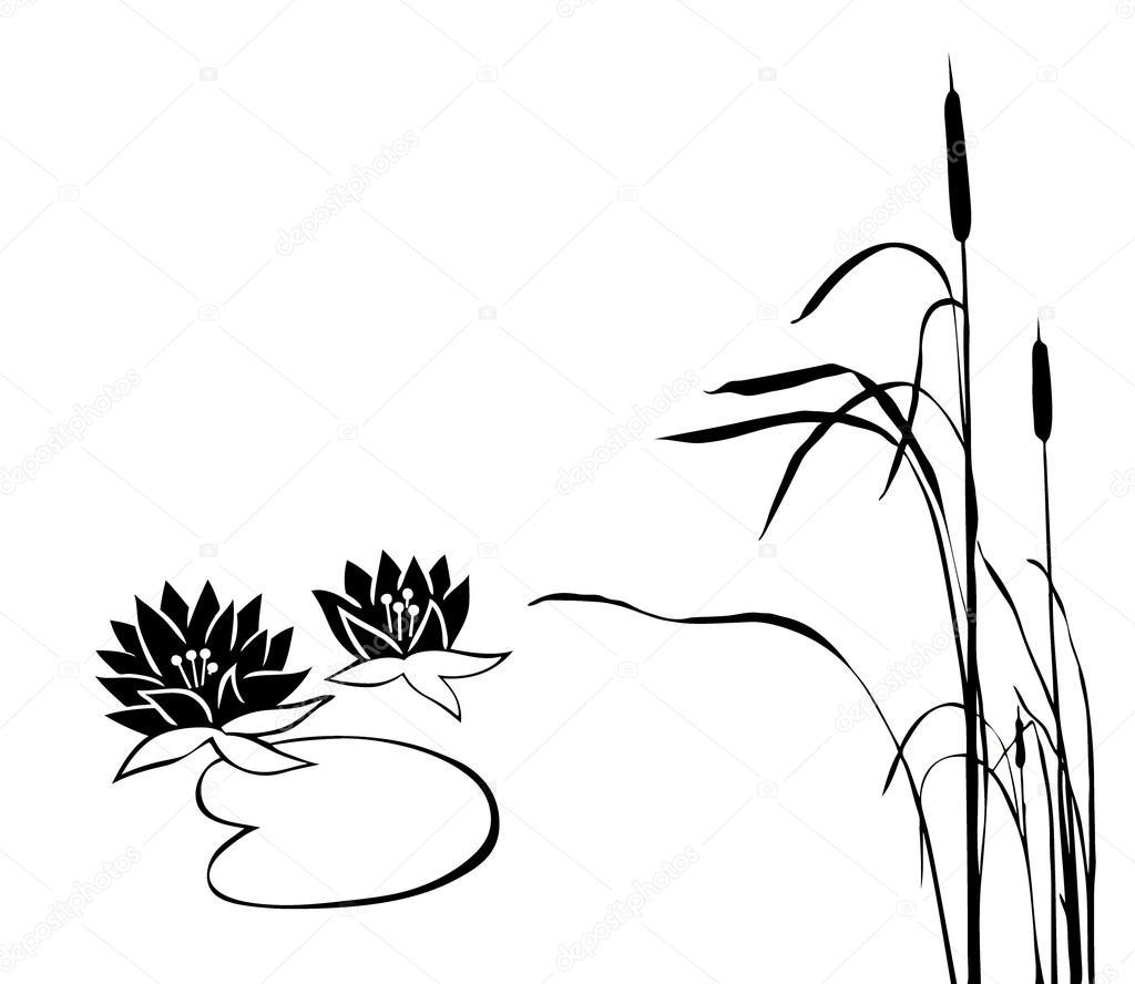 1024x888 Marsh Plants Stock Vector Basel101658