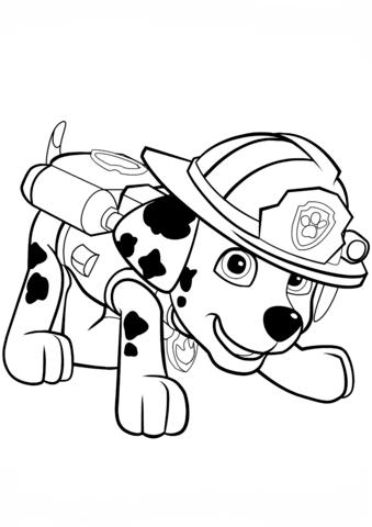 339x480 Paw Patrol Marshall Puppy Coloring Page Paw Patrol