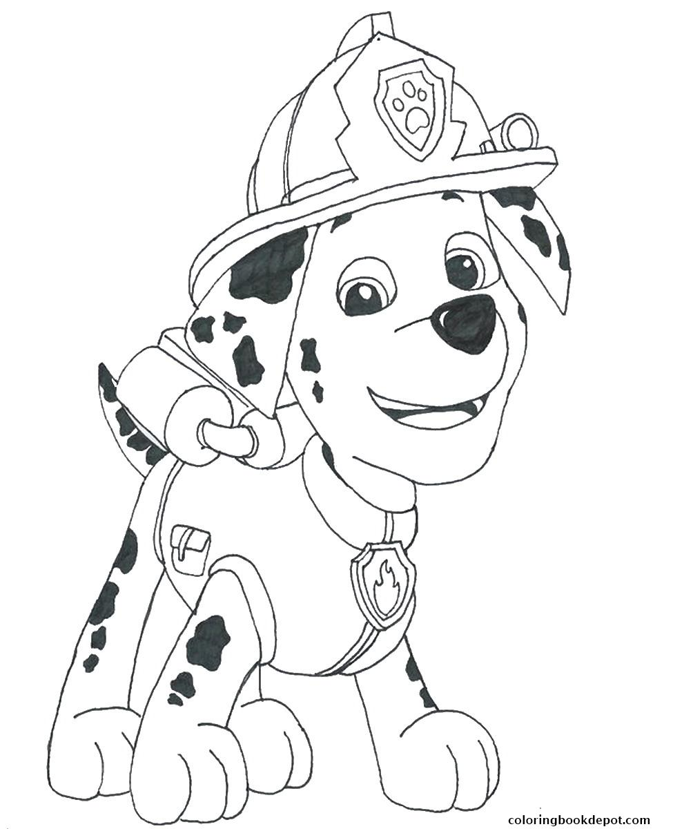 Marshall Paw Patrol Drawing at GetDrawings | Free download