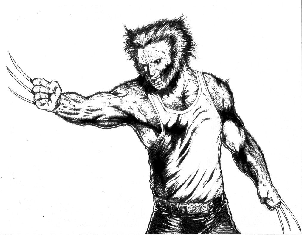 1013x788 Wolverine Marvel Comics By Ferniecastellanos