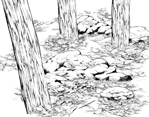 519x407 People Who Sick Of Drawing Natural Object Must See! Draw Forest