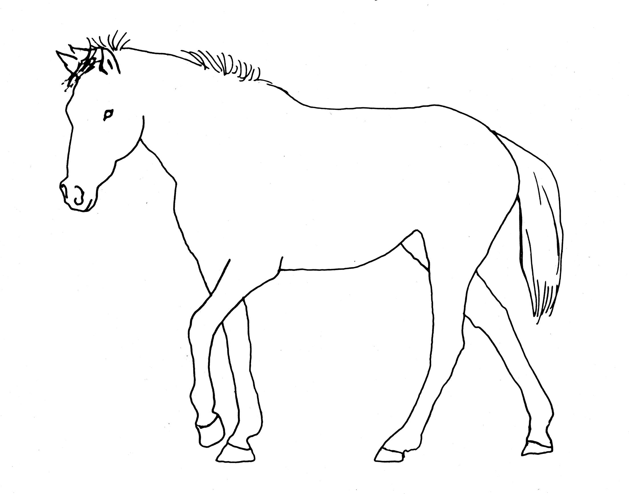 2205x1732 Matrix Line Drawing