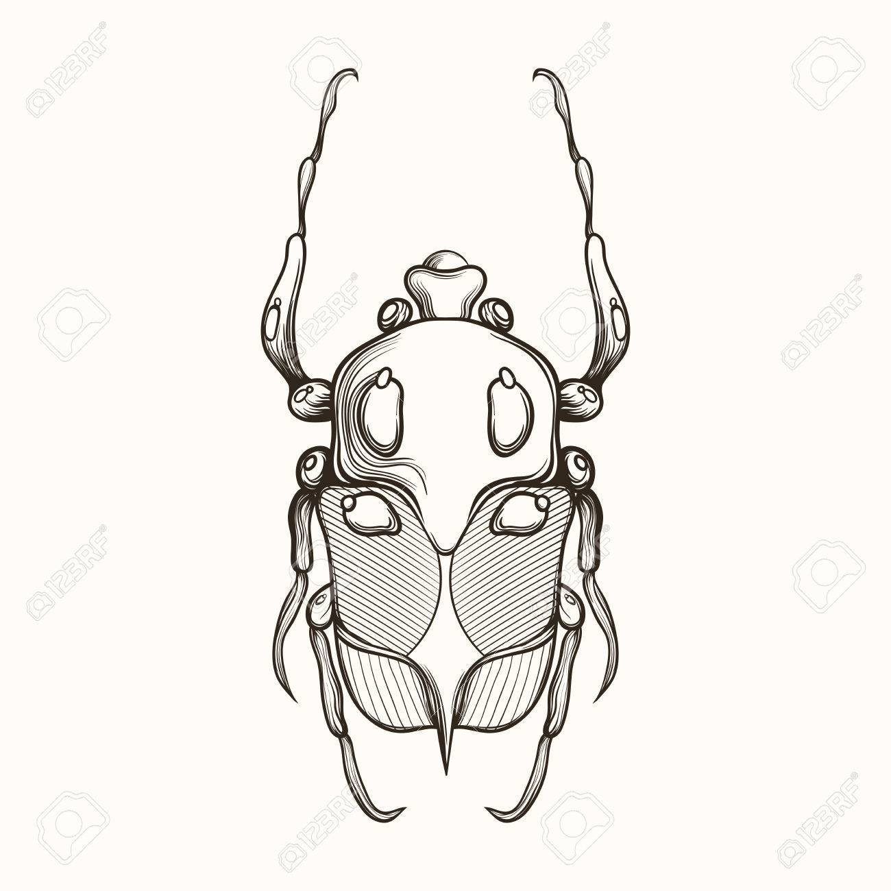1300x1300 Hand Drawn Engraving Sketch Of Scarab Beetle, May Bug Or European