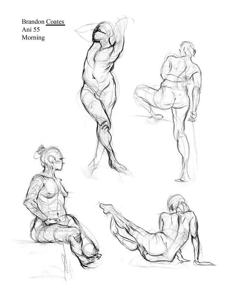 736x952 293 Best Drawing Tips Images On Drawing Techniques