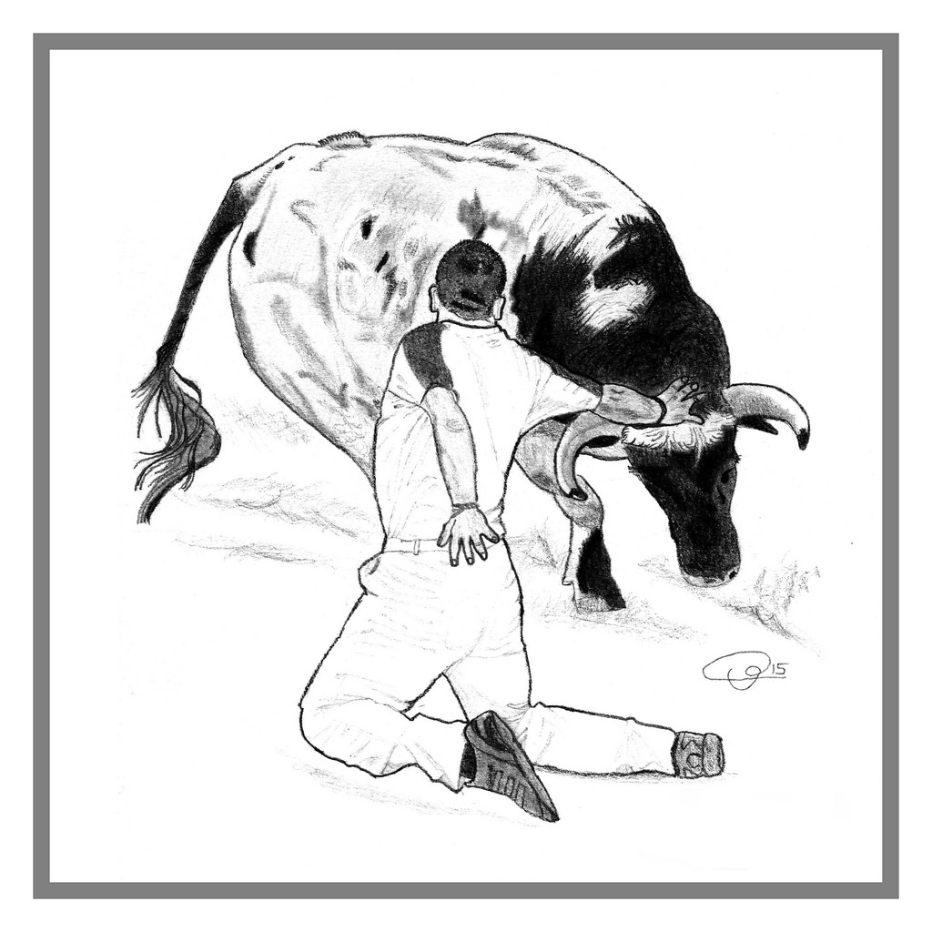 1024x1024 The World's Best Photos Of Bull And Drawing