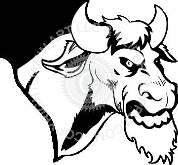 361x335 Bull Head Image