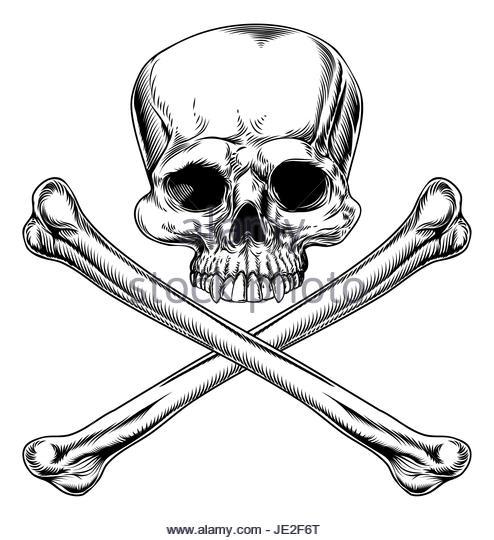 494x540 Tattoo Style Skull Illustration Stock Photos Amp Tattoo Style Skull