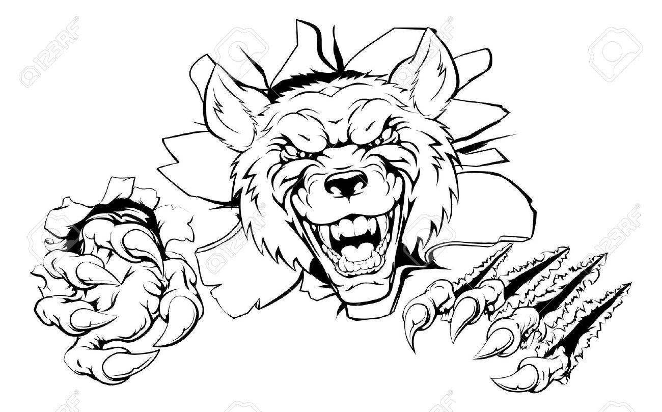 1300x809 An Illustration Of A Tough Looking Wolf Animal Sports Mascot
