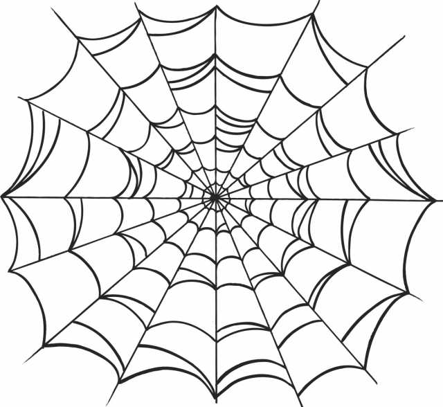 640x588 Meaningful Spider Web Clipart Web Drawing