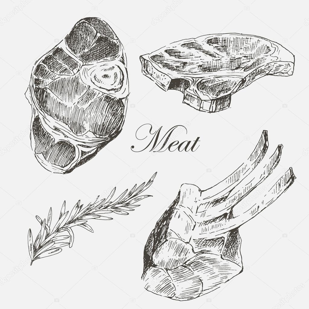 1024x1024 Vector Steak Meat Hand Drawing With Pepper And Rosemary. Detailed