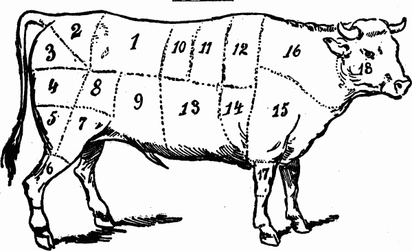 600x366 Cuts Of Meat