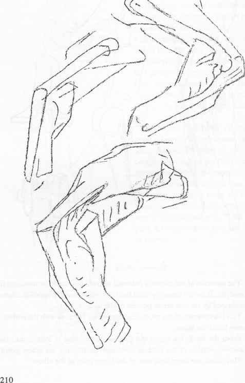 477x746 Pencil Sketch Of Elbow Joint