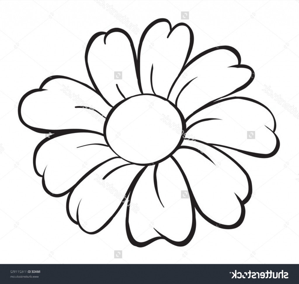 1024x971 A Drawing Showing A Picture Of A Flower Drawing Flower Designs
