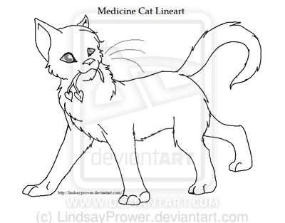 400x313 Warriorslineart Medicine Cat By Lindsayprower D3 By