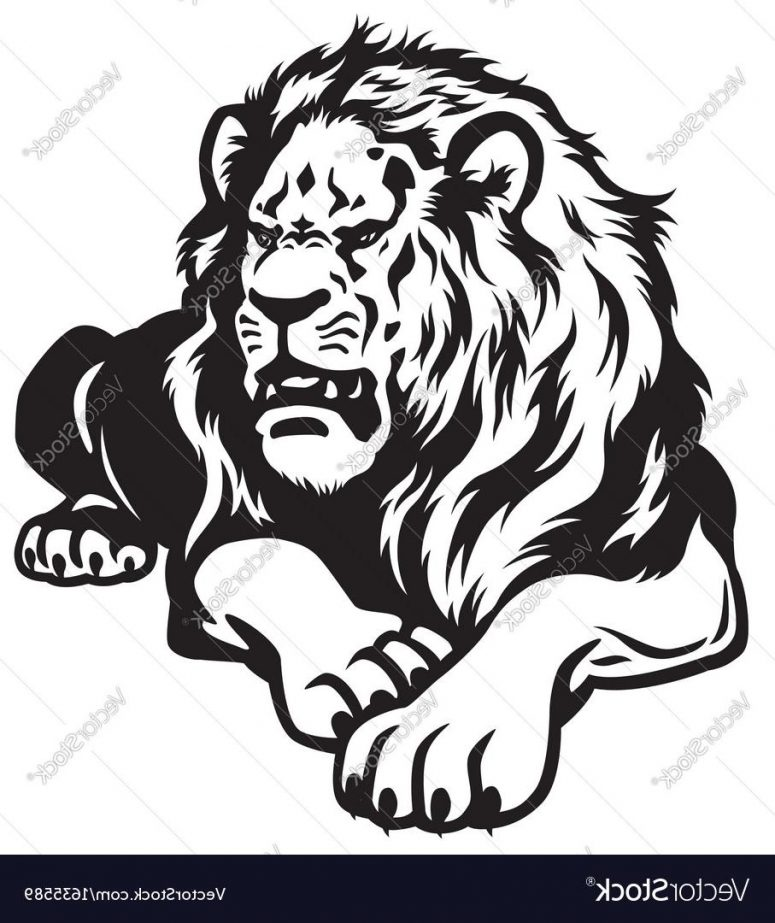 775x923 Hd Lion Drawing Black And White Vector File Free